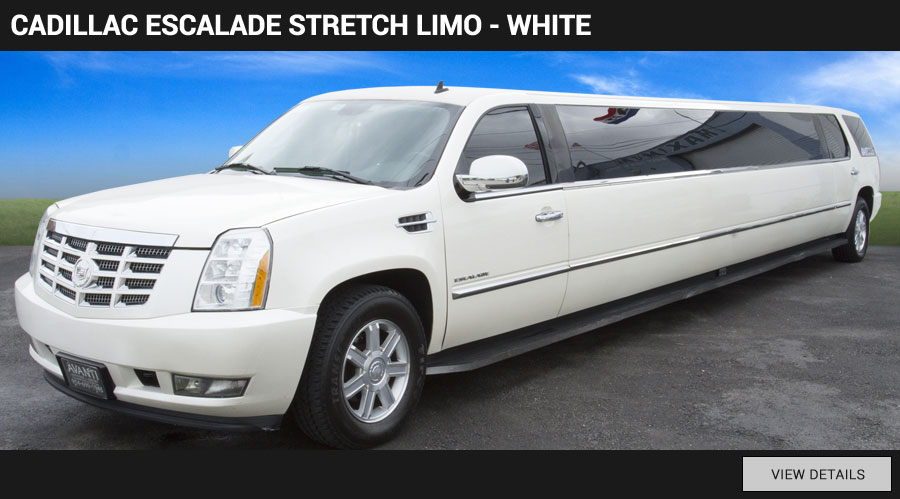 fleet-cadillac-limo-white-older